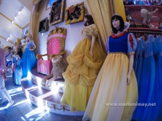 Princesses dress available for rent